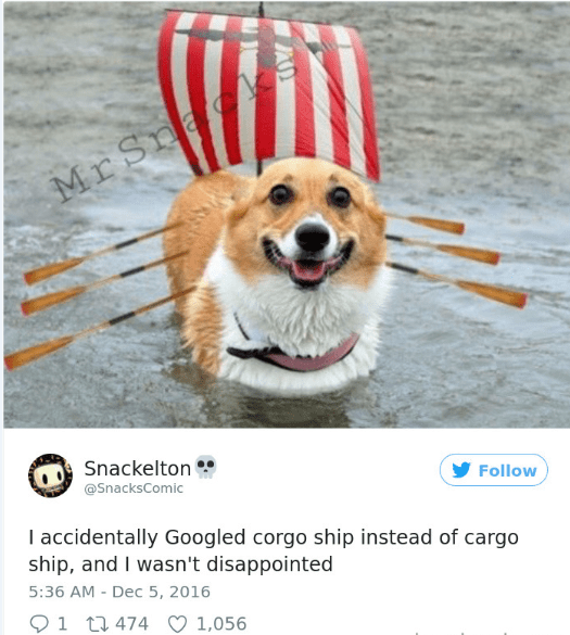 Dog - MrSnad Snackelton @SnacksComic Follow I accidentally Googled corgo ship instead of cargo ship, and I wasn't disappointed 5:36 AM - Dec 5, 2016 1 t474 1,056