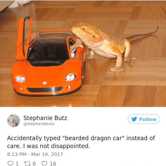 """Supercar - Stephanie Butz @stephaniebutz Follow Accidentally typed """"bearded dragon car"""" instead of care. I was not disappointed. 8:13 PM Mar 19, 2017 1 6 16"""