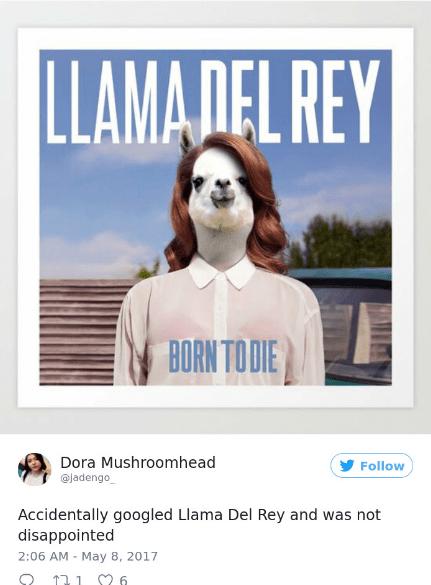 Font - LLAMADEL REY BORN TO DIE Dora Mushroomhead @Jadengo Follow Accidentally googled Llama Del Rey and was not disappointed 2:06 AM May 8, 2017