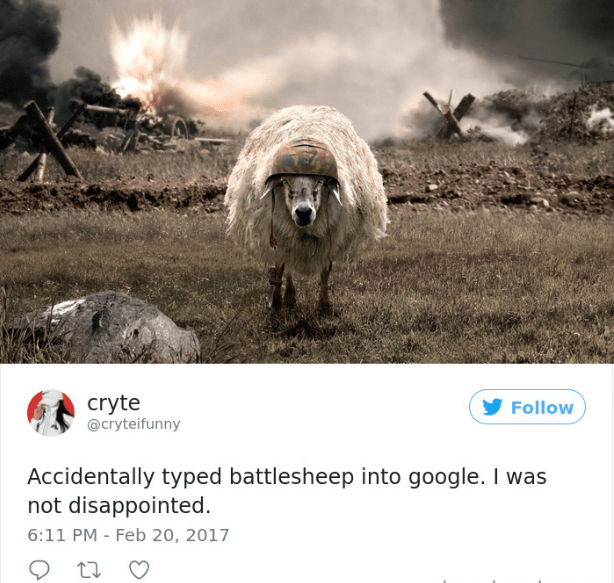 Dog - cryte @cryteifunny Follow Accidentally typed battlesheep into google. I was not disappointed 6:11 PM Feb 20, 2017