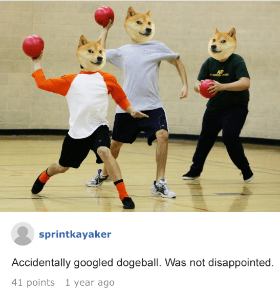Dodgeball - AR sprintkayaker Accidentally googled dogeball. Was not disappointed 41 points 1 year ago
