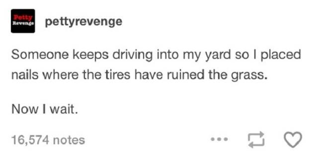 Text - Petty Reveings pettyrevenge Someone keeps driving into my yard so I placed nails where the tires have ruined the grass. Now I wait. 16,574 notes