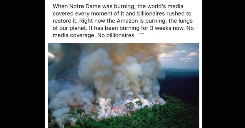 Depressing Twitter reactions about the Amazon rain forest being on fire