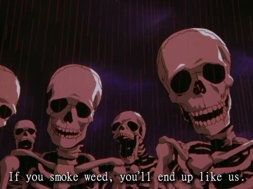skeleton meme - Skull - If you smoke weed, you'll end up like us.