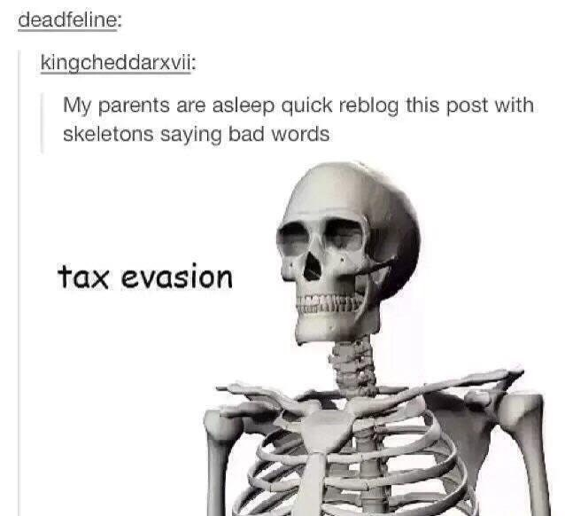skeleton meme - Head - deadfeline: kingcheddarxvii: My parents are asleep quick reblog this post with skeletons saying bad words tax evasion