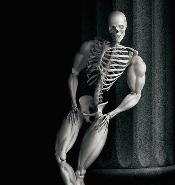 skeleton meme - Shoulder