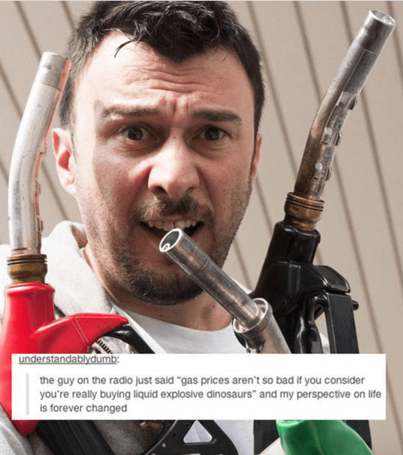 """Woodwind instrument - understandablydumb: the guy on the radio just said """"gas prices aren't so bad if you consider you're really buying liquid explosive dinosaurs"""" and my perspective on life is forever changed"""