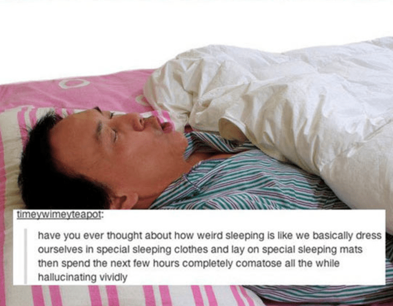 Sleep - timeywimeyteapot have you ever thought about how weird sleeping is like we basically dress ourselves in special sleeping clothes and lay on special sleeping mats then spend the next few hours completely comatose all the while hallucinating vividly