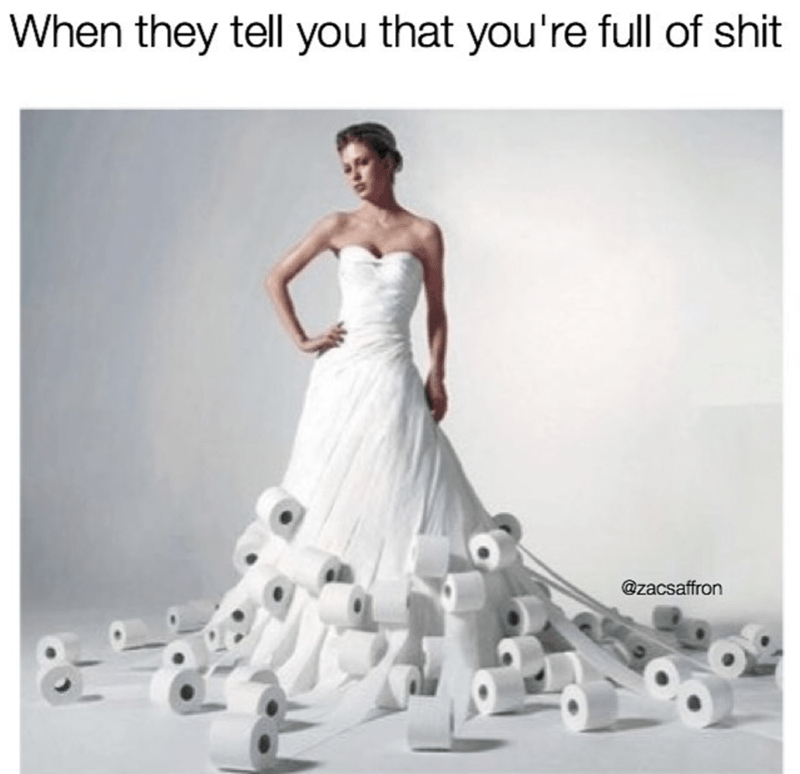 Bride wearing dress made of toilet paper rolls as what to do when everyone tells you that you're full of sh*t