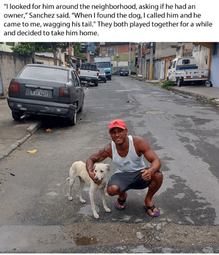 "Street dog - ""I looked for him around the neighborhood, asking if he had an owner,"" Sanchez said. ""When I found the dog, I called him and he came to me, wagging his tail."" They both played together for a while and decided to take him home. HC42"