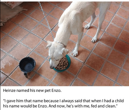"Dog breed - Heinze named his new pet Enzo. ""I gave him that name because l always said that when I had a child his name would be Enzo. And now, he's with me, fed and clean."""