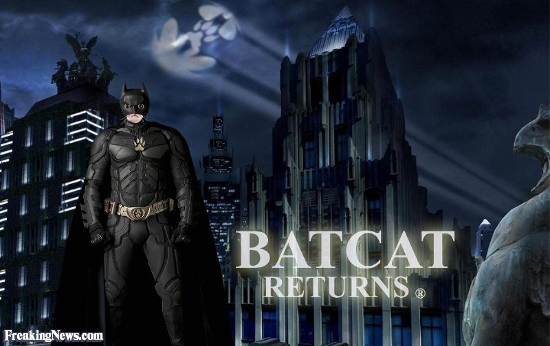 Action-adventure game - BATCAT RETURNS FreakingNews.com