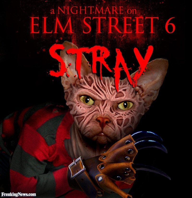 Fictional character - a NIGHTMARE on ELM STREET 6 RAY FreakingNews.com