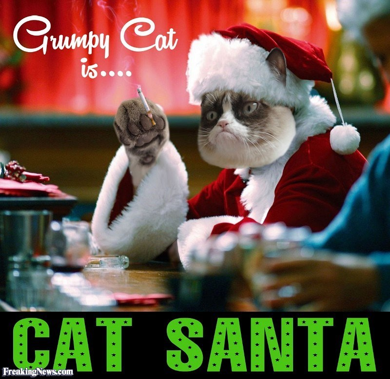 Photo caption - Grumpy Cat iS...0 CAT SANTA Freaking News.com
