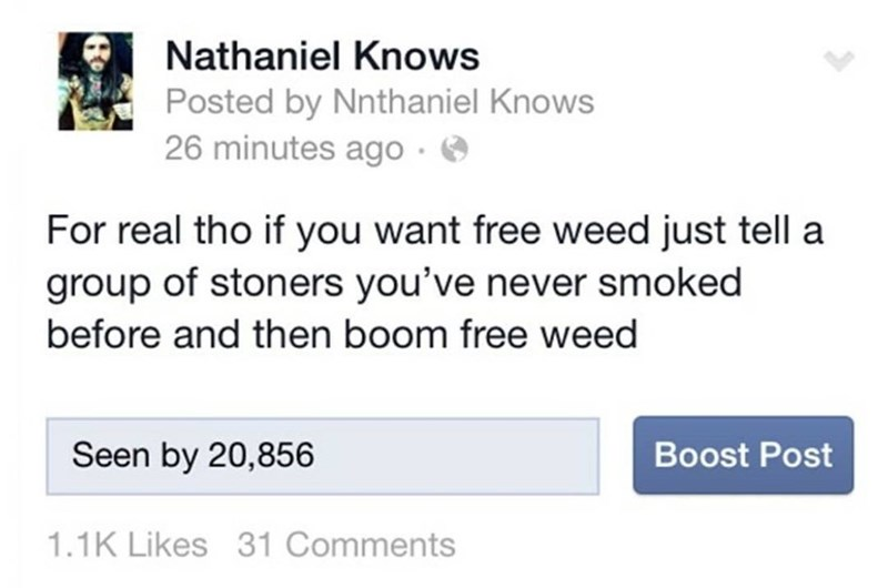 Funny meme about how if you want weed tell someone that has weed that you've never smoked before.