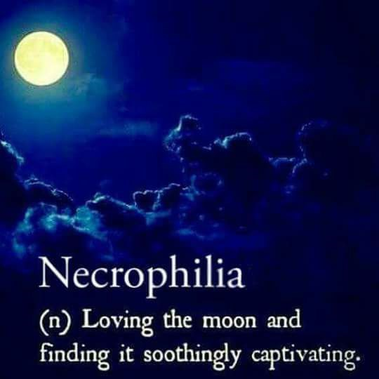 Funny meme saying that necrophelia is actually loving the moon.