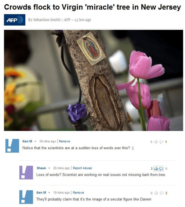 Flower - Crowds flock to Virgin 'miracle' tree in New Jersey By Sebastian Smith| AFP -15 hrs ago AFP 39 mins ago Remove Ken M Notice that the scientists are at a sudden loss of words over this?) 28 mins ago Report Abuse 3 Shaun 0 Loss of words? Scientist are working on real issues not missing bark from tree. Ken M Remove 19 mins ago 0 2 They'll probably claim that it's the image of a secular figure like Darwin