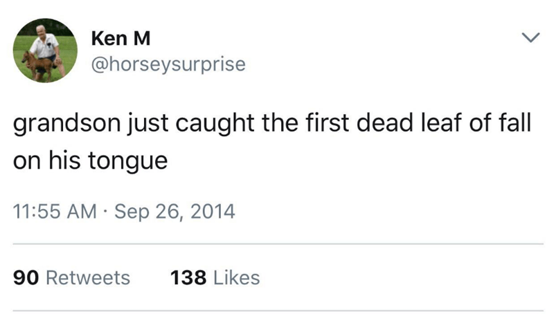 Text - Ken M @horseysurprise grandson just caught the first dead leaf of fall on his tongue 11:55 AM Sep 26, 2014 90 Retweets 138 Likes
