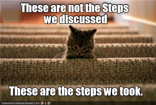 cat meme steps funny cats - 9087458560