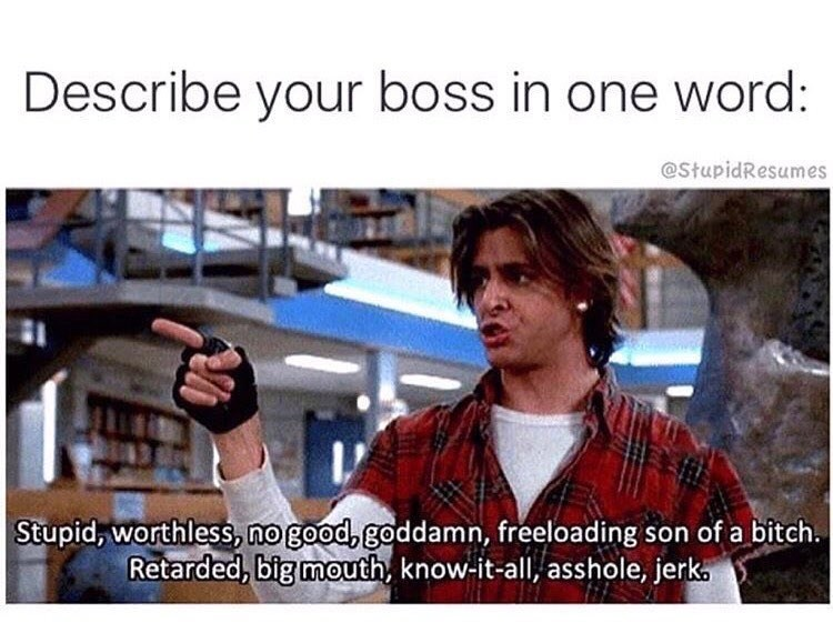 work meme - Photography - Describe your boss in one word: @StupidResumes Stupid, worthless, no good, goddamn, freeloading son of a bitch Retarded, big mouth, know-it-all, asshole, jerka