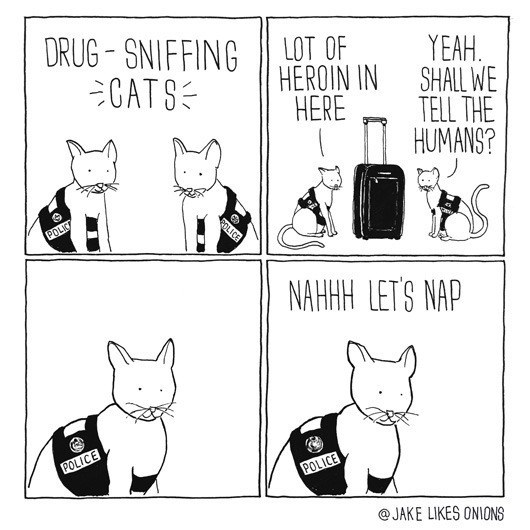 Cartoon - DRUG- SNIFFINGHFROIN IN SHALL WE CATS YEAH HEROIN IN HERE TELL THE HUMANS? ROLICE POLICA NAHAH LET'S NAP POLICE POLICE @JAKE LIKES ONIONS