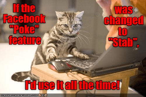 cat poke stab facebook caption - 9087869184