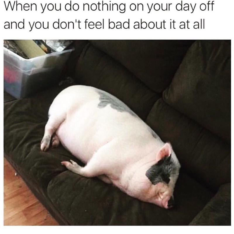 Funny meme about doing nothing.