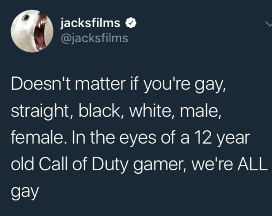 Funny meme about how twelve year old call of duty players call everyone gay.