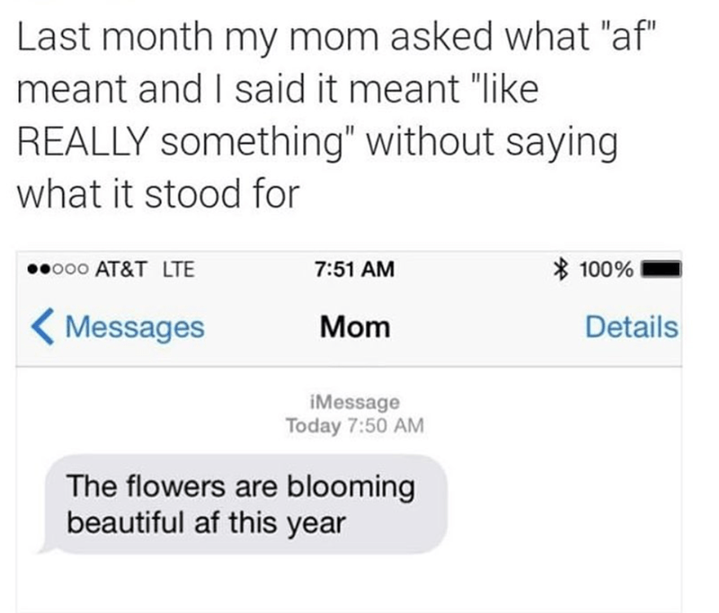 "Text - Last month my mom asked what ""af"" meant and I said it meant ""like REALLY something"" without saying what it stood for 100% ooo AT&T LTE 7:51 AM Details Messages Mom iMessage Today 7:50 AM The flowers are blooming beautiful af this year"