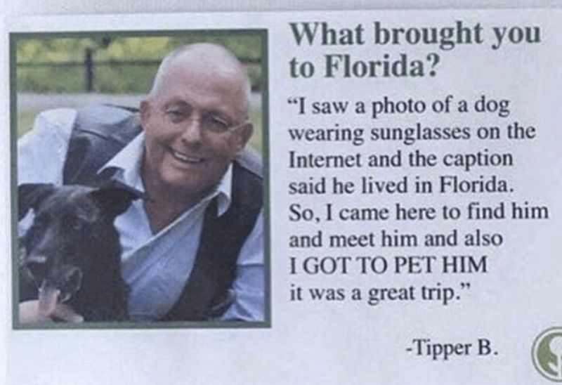 "Text - What brought you to Florida? ""I saw a photo of a dog wearing sunglasses on the Internet and the caption said he lived in Florida. So, I came here to find him and meet him and also I GOT TO PET HIM it was a great trip. -Tipper B"