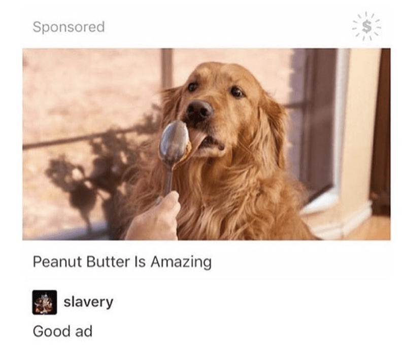 Dog - Sponsored Peanut Butter Is Amazing slavery Good ad
