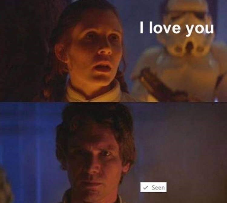 "Funny meme about Han and Leia from Star Wars, Leia tells Han solo she loves him and it is marked as ""seen."""