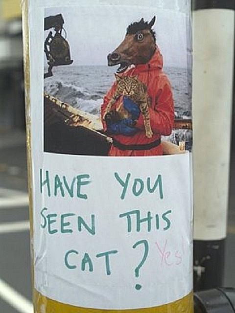 missing cat sign of a man wearing a horse mask and holding a cat on a boat