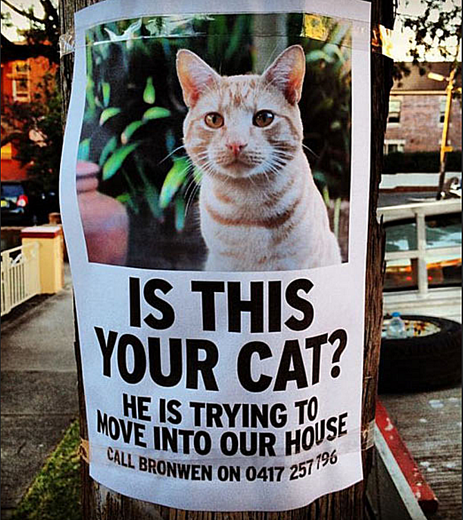 lost cat sign begging owners to take their cat who is always at another persons home