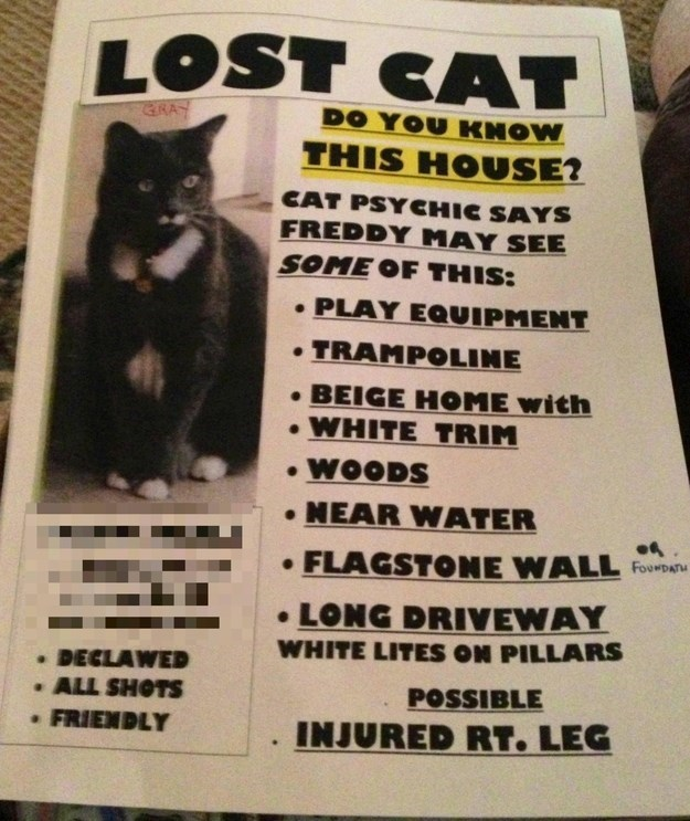 lost cat sign describing what a psychic said the cat may be