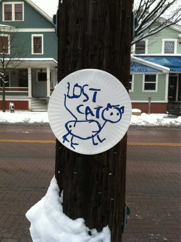 lost cat sign drawn on a paper plate