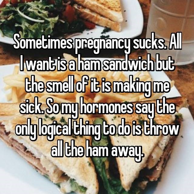 Food - Sometimes pregnancy sucks. Al lwantis a ham sandwich but the smellofit is making me stck Somy hormones saythe only bogical thing todo is throw allthe ham away