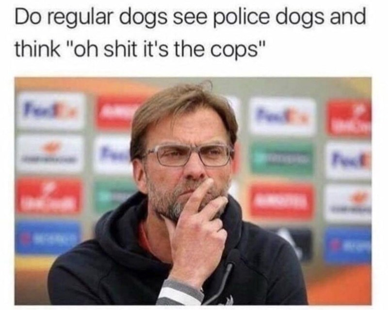 Funny meme about police dogs.