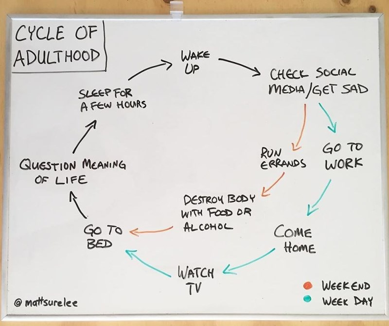 Text - CYCLE OF ADULTHOOD WAKE UP CHEC SOCIAL MEDIA GET SAD SLEEP FOR A FEw HOURS GO TO WORK RUN ERRANDS QUESTION MEANING OF LIFE DESTROY BODY WITH FOOD DR ALCOHOL Go To BED COME HomE WATCH TV WEEKEND WEEK DAY matsurelee