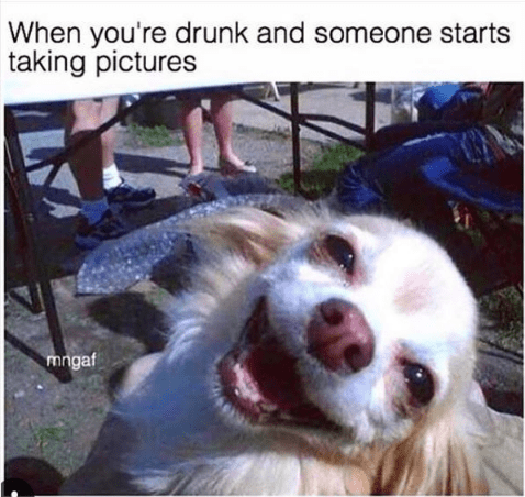 drinking meme about taking funny photos while drunk with pic of dog smiling goofily