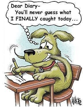 Funny meme of a dog writing to his diary about catching his tail