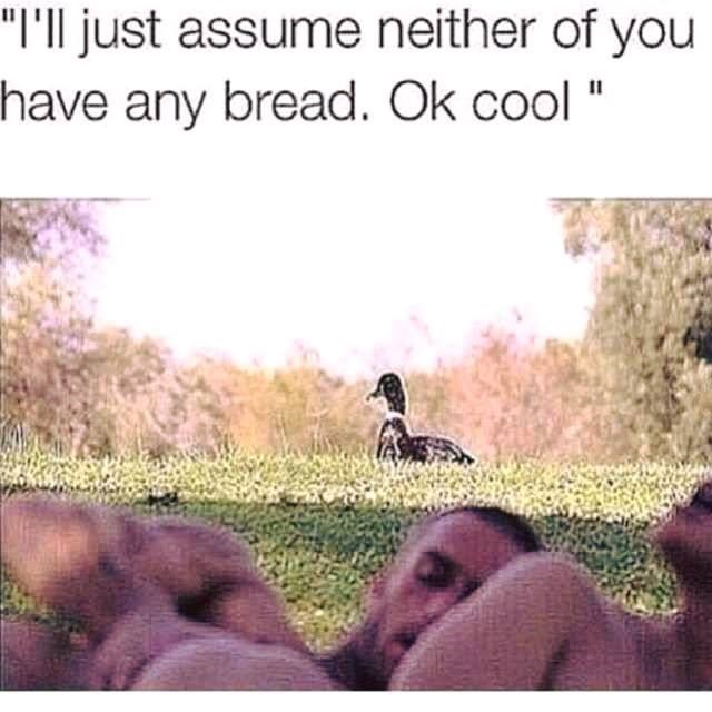 sexual memes - inappropriate memes photo of a duck standing on a hill by a couple having sex with the text 'i'll just assume neither of you have any bread. ok cool'