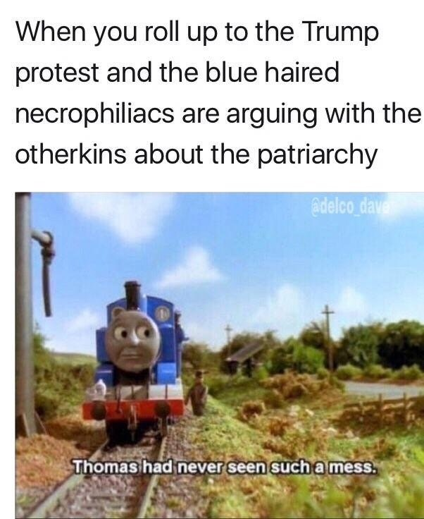 offensive Thomas meme about necrophiliacs and otherkin