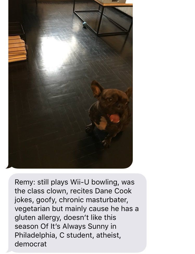 Text - Remy: still plays Wii-U bowling, was the class clown, recites Dane Cook jokes, goofy, chronic masturbater, vegetarian but mainly cause he has a gluten allergy, doesn't like this season Of It's Always Sunny in Philadelphia, C student, atheist, democrat