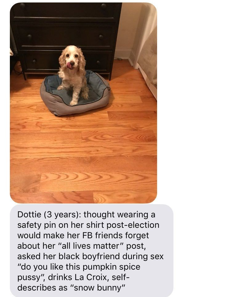 "Dog - Dottie (3 years): thought wearing safety pin on her shirt post-election would make her FB friends forget about her ""all lives matter"" post, asked her black boyfriend during sex ""do you like this pumpkin spice pussy"", drinks La Croix, self- describes as ""snow bunny"""