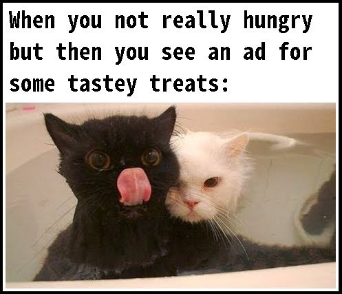funny cat meme about not really being hungry but then seeing an ad for food and feeling hungry