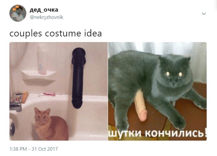 Cat - дед очка @nekryzhovnik couples costume idea шутки кончились! 1:38 PM 31 Oct 2017