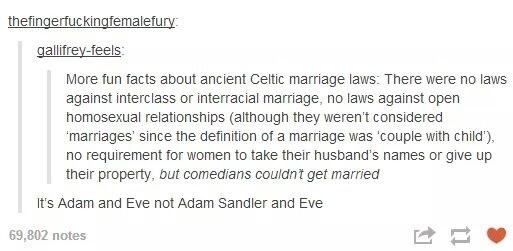 Funny meme about rant on how ancient Celtic marriages let anyone get married except comedians, and someone chimes in it is Adam and Eve, not Adam Sandler and Eve