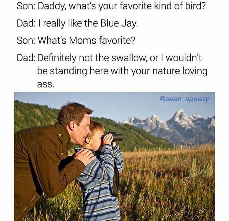 Funny meme of dad and son enjoying some time in nature