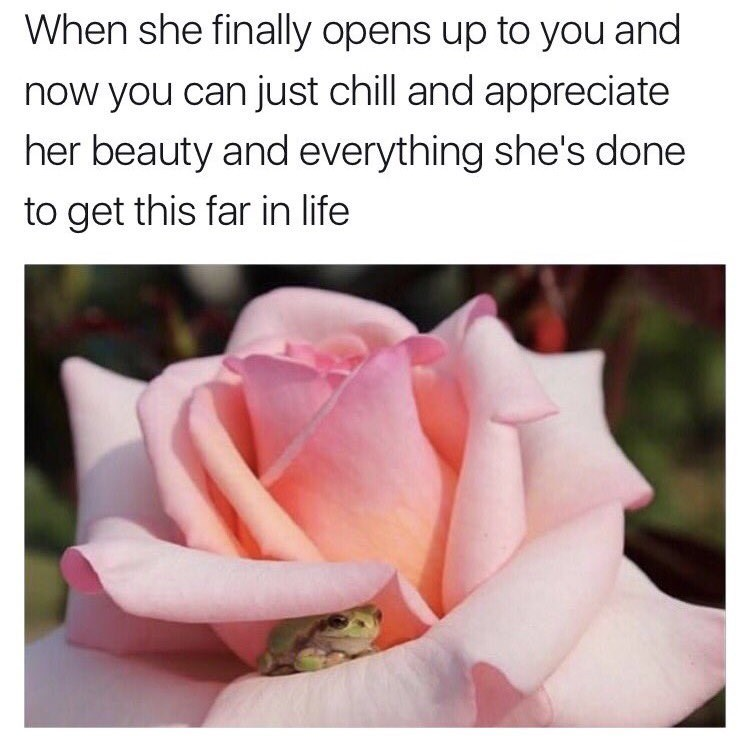 Tiny frog hiding in a flower about when she finally opens up to you and now you can chill and appreciate her beauty